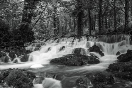 Cascade at Dun-a-Ri Forest Park in County Cavan in...