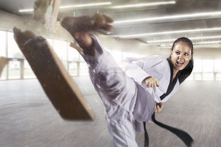 Photo for Applying focus and power (Martial arts) - Royalty Free Image