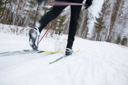 Photo for Cross country skiing, close-up - Royalty Free Image