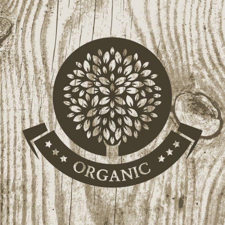 Illustration for Organic product badge with tree on wooden texture. Vector illustration background. Garden or ecology icon. - Royalty Free Image