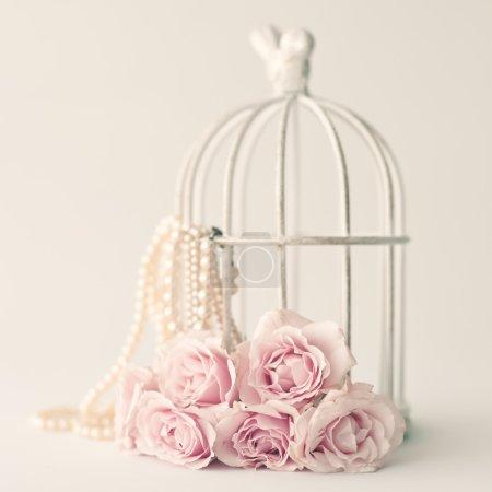Photo pour Soft pastel vintage still life with pink roses and birdcage - image libre de droit
