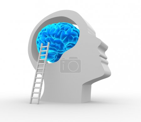 Human head with brain and ladder