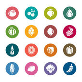 A collection of different kinds of fruit and vegetables color icons