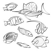 A set of sketching different types of fish