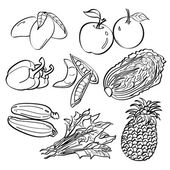 A set of sketching of fruits and vegetables isolated on a white background