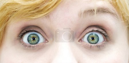 Photo for Closeup of the eyes of blond woman - Royalty Free Image