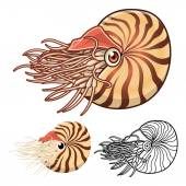High Quality Nautilus Cartoon Character Include Flat Design and Line Art Version