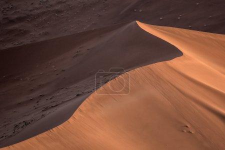 Photo pour Vue de la nature namibienne - image libre de droit