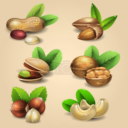 Set of nuts 5
