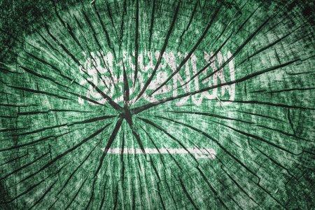 Photo pour Drapeau de l'Arabie Saoudite sur texture de bois fissuré - image libre de droit