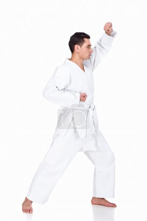 Photo for Portrait of a martial arts master on the white background. - Royalty Free Image