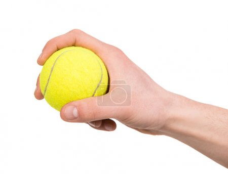 Photo for Hand holding tennis ball on white background. - Royalty Free Image