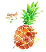 Ananas s barvou šplouchá