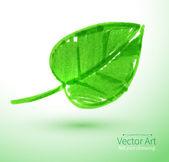 Felt pen Green leaf