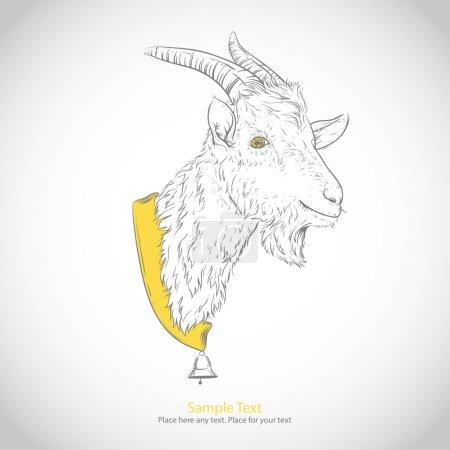 Head or mountain goat