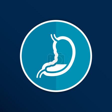 Human stomach icon human cross intestinal