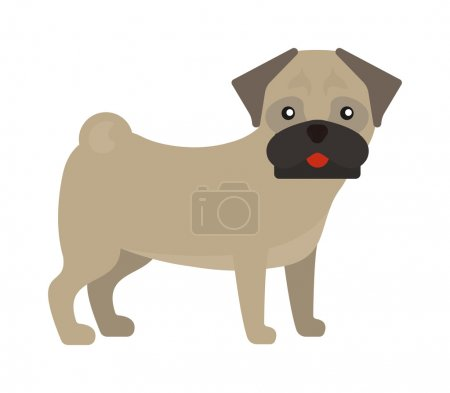 Pug dog standing animal canine purebred puppy portrait funny young small pet vector.