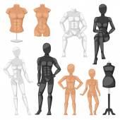 Dummy mannequin model vector illustration