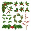 Merry Christmas mistletoe with berry frame. Tradit...