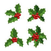 Christmas berry decoration vector set