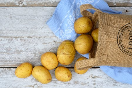 Photo for Organic fresh uncooked potatoes in a jute bag on a old weathered wooden white shelves background with vintage blue kitchen tea towel with empty copy space. - Royalty Free Image