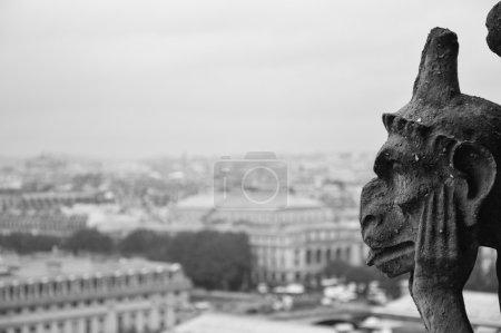 Photo pour Panorama di Parigi in bianco e nero con profilo di Gargoille. - image libre de droit
