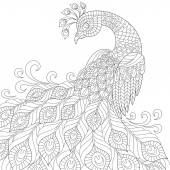 Decorative peacock. Adult antistress coloring page