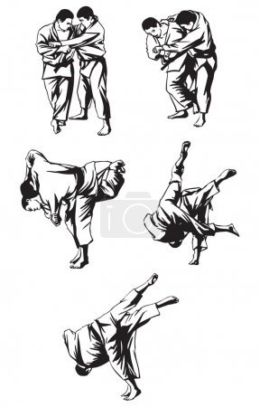Japan Aikido fighting