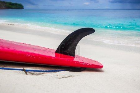 Surfboard and ocean