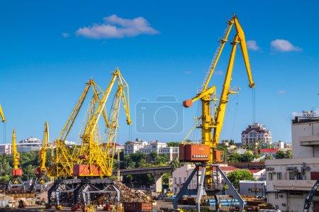 Gantry port cranes on the skyline