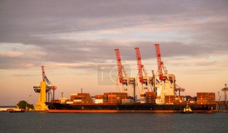 Photo pour Chargement du chaland. Port du soir à Odessa, Ukraine - image libre de droit