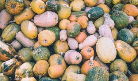 Pumpkin cuts