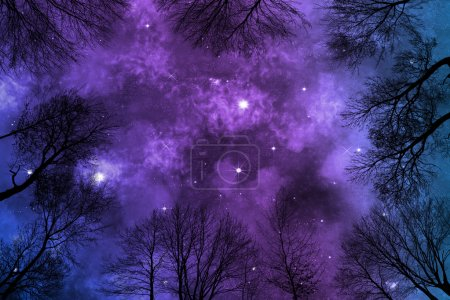 Foto de Low angle view of colorful nebula on starry night sky in forest, view through trees, background - Imagen libre de derechos