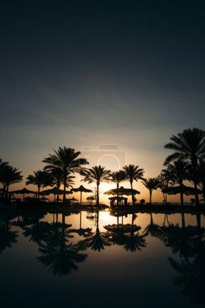 Foto de Hermosa puesta de sol en un resort de playa en trópicos con palmeras y agua - Imagen libre de derechos