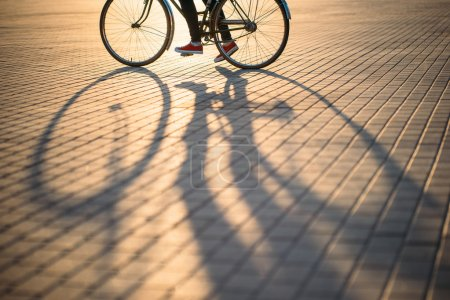 Bicycle wheel and shadow, Hipster lifestyle