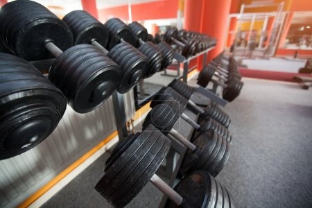 Photo for Rows of black dumbbells - Royalty Free Image