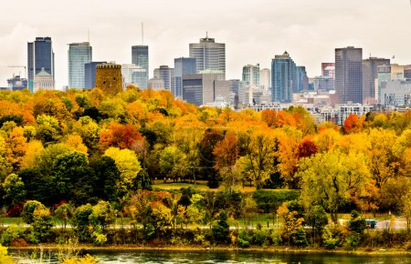 Montreal downtown in the autumn