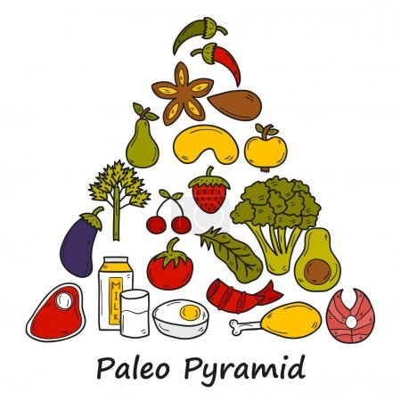 Set of objects in hand drawn style on diet theme: meat, fish, fruits, vegetables, spices, nuts. Paleo pyramid. Healthy food concept