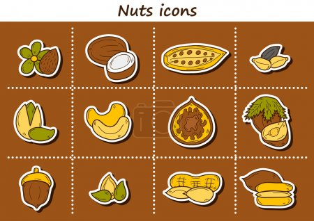 Set of cartoon hand drawn stickers on nuts theme: hazelnut, pumpkin and sunflower seeds, peanut, pecan, pistachio, cashew, walnut, acorn, almond, coconut, cocoa. Raw healthy food concept