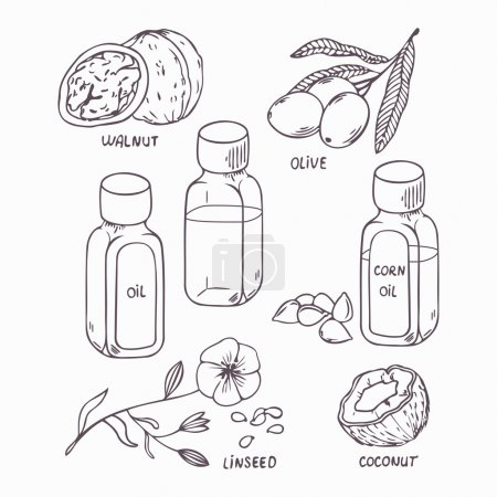 Illustration for Healthy oil set in outline style. Coconut, walnut, olive, corn and linseed oil vector illustration - Royalty Free Image