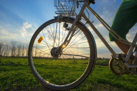 Color bike in sunny day, bike series
