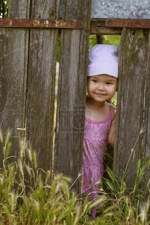 Little girl  playing peek a boo through a gap in a broken plank in a rustic wooden fence