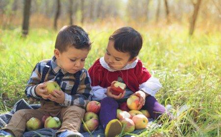 Photo pour Deux petits enfants mangeant des pommes dans le parc - image libre de droit