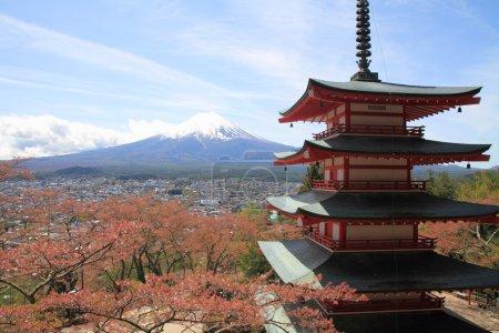 Mt. Fuji and cherry blossoms with five storied pagoda from Arakura yama Sengen park