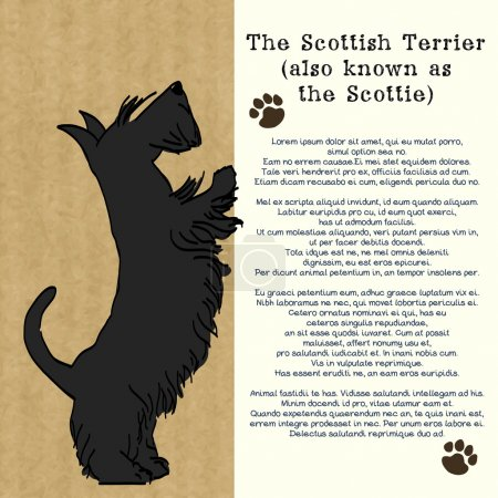 Brochure with sketch of Scottish terrier