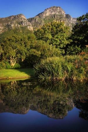 Photo pour Étang à Kirstenbosch Botanical Garden, banlieue du Cap, Cap-Occidental, Afrique du Sud . - image libre de droit