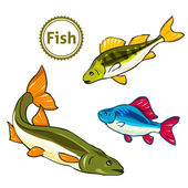 Vector illustration of fishes