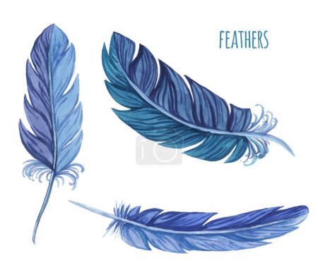 Set of watercolor feathers. Vector