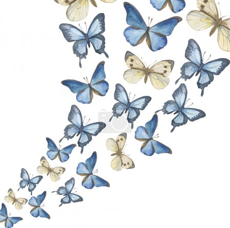 The flying-up watercolor butterflies. Vector