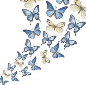 The flying-up watercolor butterflies Vector illustration